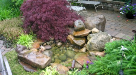 Garden Pond with Cut Leaf Japanese maple