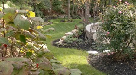 Curvilinear Landscape Beds