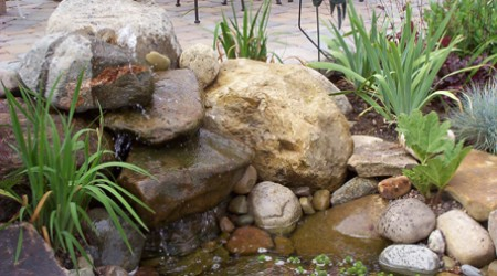 Small Garden Pond and Waterfall